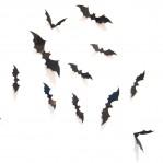 Set 12 mini vleermuizen glans zwart