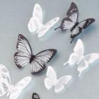 Set 18 deco vlinders semi transparant zwart-wit