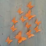 Set 12 glans vlinders oranje-bruin