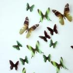 Set 18 deco vlinders semi transparant groen