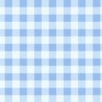 B14 - lichtblauw ruitje M