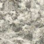 DR30 - ASC Natura Wolfvacht print