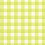 GR40 - Eijffinger groen/wit ruitje