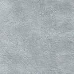 GZ103 - Glanzend lichtgrijs/zilver