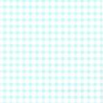 B18 - Studio Ditte helderblauw ruitje