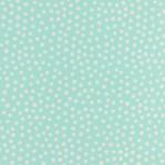 GR24 - Mintgroen met witte polkadots/stippen